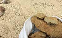 基本的な土の選び方から土作り